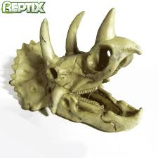 20 best reptix reptiles products images on reptiles