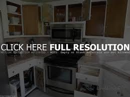 best design interior exotic dark walnut kitchen cabinet with u
