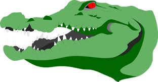 Interior Crocodile Alligator Interior Crocodile Alligator