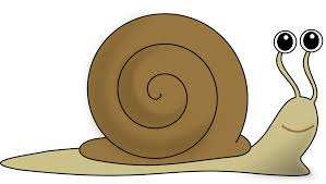 cartoon animals homepage clipart net funny snail clipartix