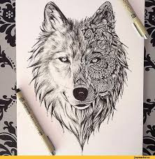 wolf wolf design pencil and in color wolf wolf design
