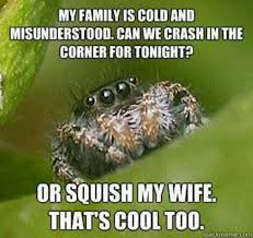 Survival Memes - the 10 best images about ahhh spiders on pinterest other