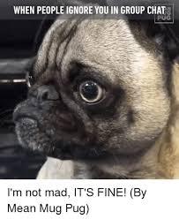 Funny Pug Memes - mad pug memes 29 wishmeme