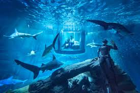 the shark aquarium houses for rent in paris 16e arrondissement