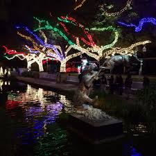 Zoo Lights In Houston by December 2014 Tumbleweed Almanac