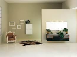 Galley Bathroom Design Ideas by Bathroom Mesmerizing Small Galley Bathroom Design Ideas With