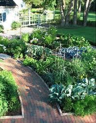 Front Yard Vegetable Garden Ideas 40 Best Front Yard Veggie Gardens Images On Pinterest Edible