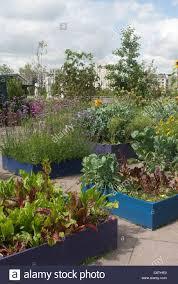 vegetable garden roof champsbahrain com