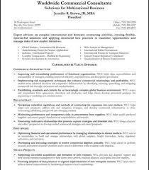 resume summary statement example career summary examples for