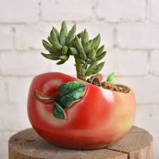 green apple home decorations online green apple home decorations
