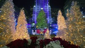 rockefeller center tree to come from pennsylvania newsday