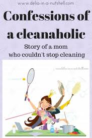 confessions of a clean aholic delia in a nutshell