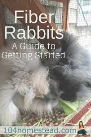 fiber rabbits a homesteader u0027s guide to getting started