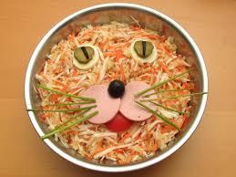 alimentazione casalinga gatto alimentazione casalinga e gatto cliffi