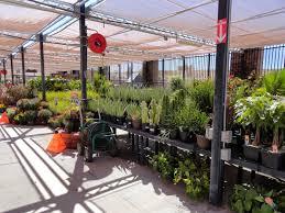 fred meyer garden center the gardens