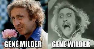Gene Meme - memebase willy wonka all your memes in our base funny memes