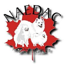 american eskimo dog for sale ontario national american eskimo dog association of canada national