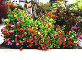 Simple Flower Garden Ideas Decoration Flower Garden Ideas For Small Yards