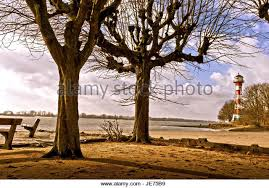 lighthouse and trees stock photos lighthouse and trees stock
