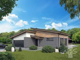 expressive and exceptional single storey single slope roof