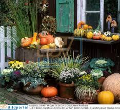 topfpflanzen balkon terrassen deko herbst details zu 0003160137 herbst balkon