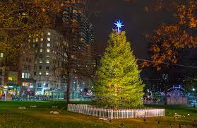 boston s tree arrives november 18 nov 10 2016