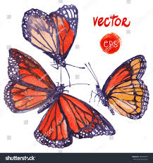monarch design vector butterfly painted watercolor beautiful flying stock vector