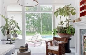 beautiful house plants beautiful houseplants modern easy care plants fresh design pedia