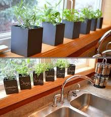Indoor Kitchen Garden Ideas Apartment Herb Garden