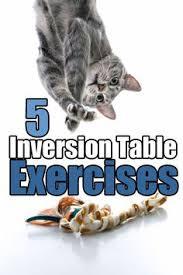 amazon black friday inversion how long to hang from an inversion table inversion table