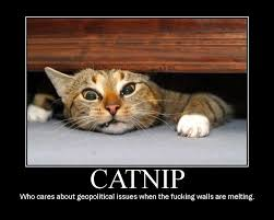 Melting Meme - catnip who cares about geopolitical issues when the fucking walls
