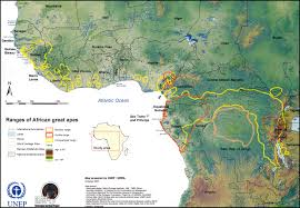 Map Of Sub Saharan Africa by African Great Apes Habitat Range Map Sub Saharan Africa U2022 Mappery