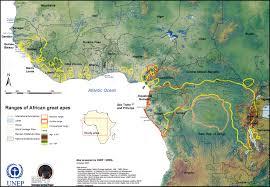 Map Of Sub Saharan Africa African Great Apes Habitat Range Map Sub Saharan Africa U2022 Mappery