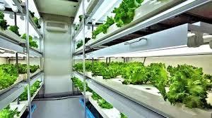 efficient urban farming with agri cube video futuristic news
