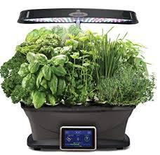indoor herb garden kits to grow herbs indoors hgtv indoor herb garden kits healthy indoor herbs