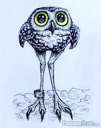 burrowing owl cartoon drawing freelance fridge illustration