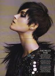 show me rockstar hair cuts best 25 short punk haircuts ideas on pinterest punk haircut