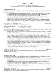 Resume Promotion Cfo Sample Resume Ambrionambrion Minneapolis Executive Search