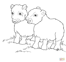 musk ox babies coloring page free printable coloring pages