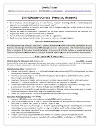 Market Research Sample Resume by The Top 4 Executive Resume Examples Written By A Professional