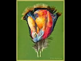 turkey feather painting animal portraits painted on turkey feathers painted feathers