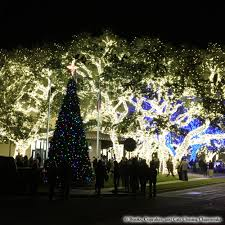 johnson city texas christmas lights pec books cupcakes and cats chasing chipmunks