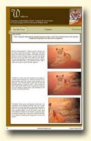 how to paint fur u2013 tiger tutorial how to draw and paint animals