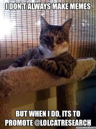 World S Most Interesting Man Meme - cat research world s most interesting man cat meme supreme