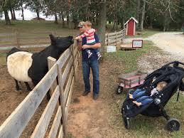 Burts Pumpkin Farm 2015 by Places Happy Harvey Home