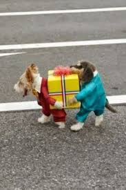 Cute Small Dog Halloween Costumes 25 Small Dog Costumes Ideas Wiener Dogs