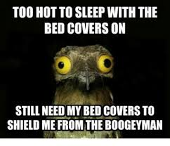 Too Hot Meme - too hot to sleep with the bed covers on still need my bed covers to