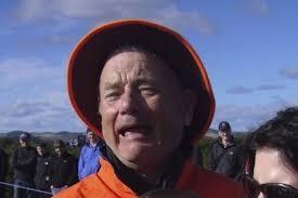 Murray Meme - so was it bill murray or tom hanks in the internet meme