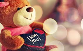 teddy valentines day teddy i you s day