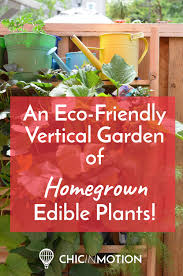 an eco friendly vertical garden of homegrown edible plants u2014 chic